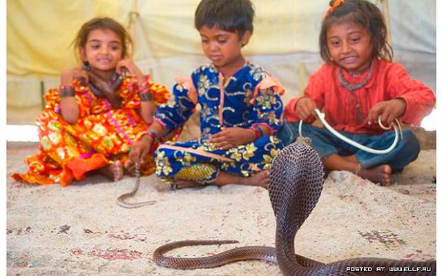Двухлетняя укротительница змей