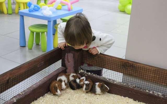 Новый контактный зоопарк открылся в Москве